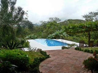 Mal Pais villa photo - Pool and Jungle