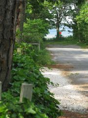 Sag Harbor cottage photo - View of the Beach as you step out our Front Door