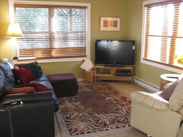 Fletcher apartment rental - The very comfortable lounge area with leather sofa and recliner. digital TV.