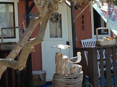 Sweet Cottage feel from the moment you enter...even our door sings!