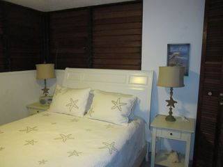Luquillo condo photo - second bedroom has a queen bed with remote control ceiling fan and light