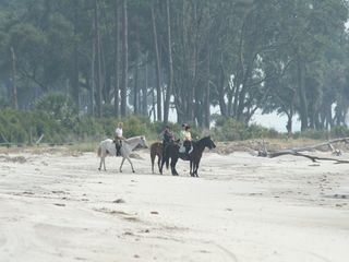 Daufuskie Island villa photo - Horseback riding on the beach. (Private Equestrian Center on property.)