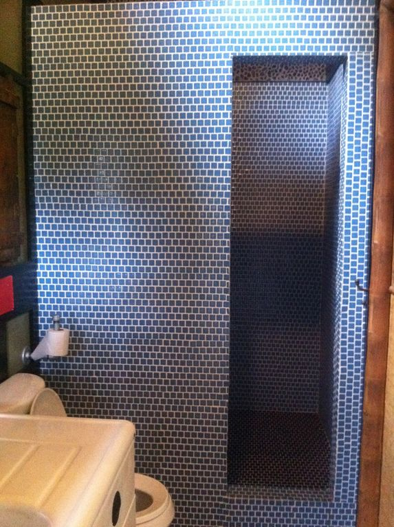 Gorgeous walk-in tiled shower.