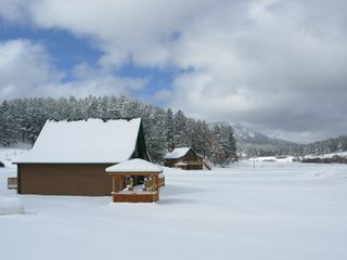 Hill City cabin photo - Winter Wonderland