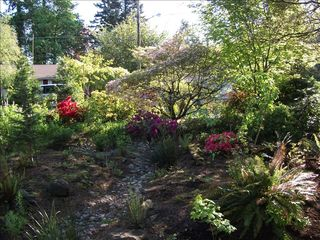 Portland house photo - Lovely, sustainable garden- native plants, interesting features