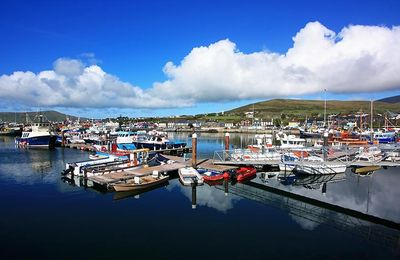 Dingle Marina, a few minutes short stroll from Waters Edge House