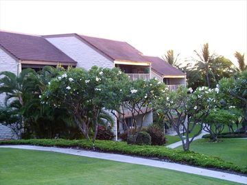 Condo building in a quiet, tranquil, tropical setting.