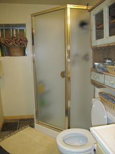 Full bath with shower in basement.