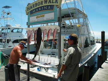 The fishing in Destin is always good, reserve a charter at Fishermans Wharf.