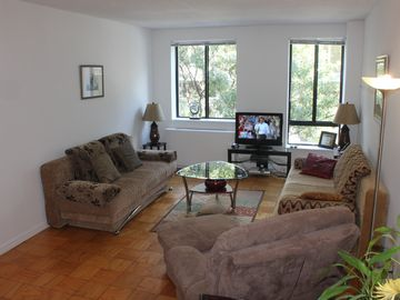 Midtown Manhattan apartment rental - Very spacious living room with 2 queen size sofa-sleepers and loveseat-sleeper