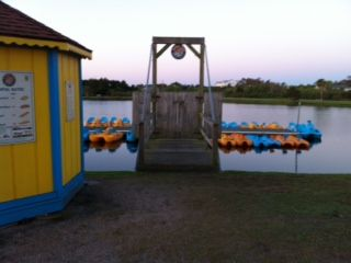 Paddle Boats at the lake