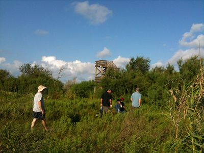 Neotropical Bird sanctuary trail - enjoy views from the observation platform