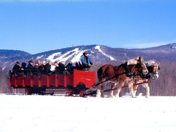 Join in on a group sleigh ride-right outside