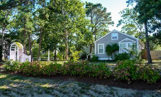 Hyannis - Hyannisport house photo - Quiet neighborhood with plenty of privacy on a 1/4 acre lot