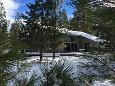 Our Spacious Cabin is Nestled Among Ponderosa Pines
