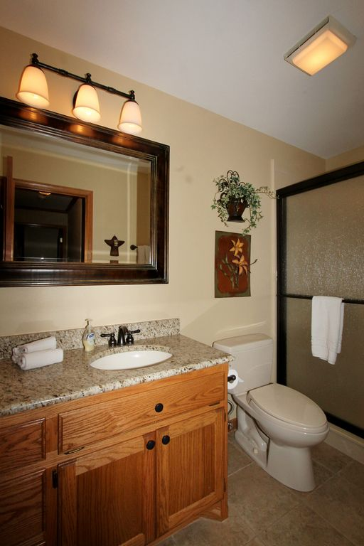 Updated guest bath with large glass shower