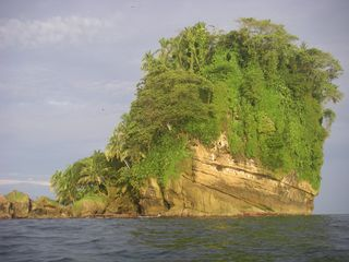 Bocas del Toro cabin photo - side view of bird island from a kayak