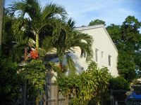 Charming Tropical Townhome in Coconut Grove