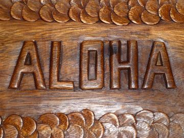 Talkeetna cabin rental - Aloha! Welcome to Hale Kolea Cabin!