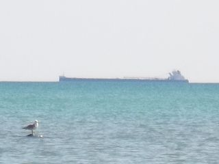 Port Sanilac cottage photo - Watch the freighters go by !!