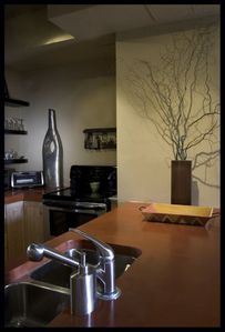 Asheville condo rental - Kitchen with concrete counter tops