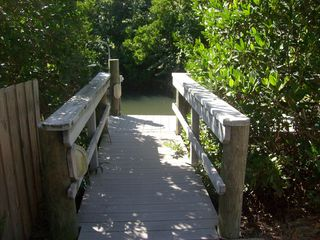 Dock to the canal-great for kayaking too! - Siesta Key house vacation rental photo