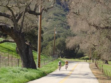 One of the many peaceful country lanes for biking!