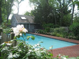 Sag Harbor house photo - Pool and pool house studio