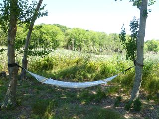 Westhampton house photo - hammock by the creek and preserve