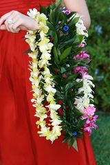 Kihei cottage photo - Maui tropical leis