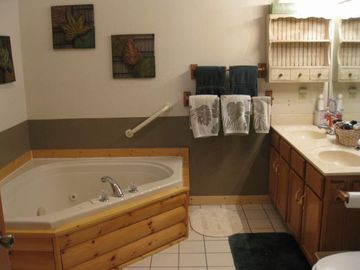 Guest bathroom with Jacuzzi tub and walk in shower