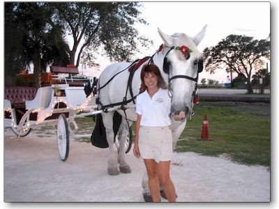 Take a carriage ride in Downtown Fernandina and hear ghost stories and history.