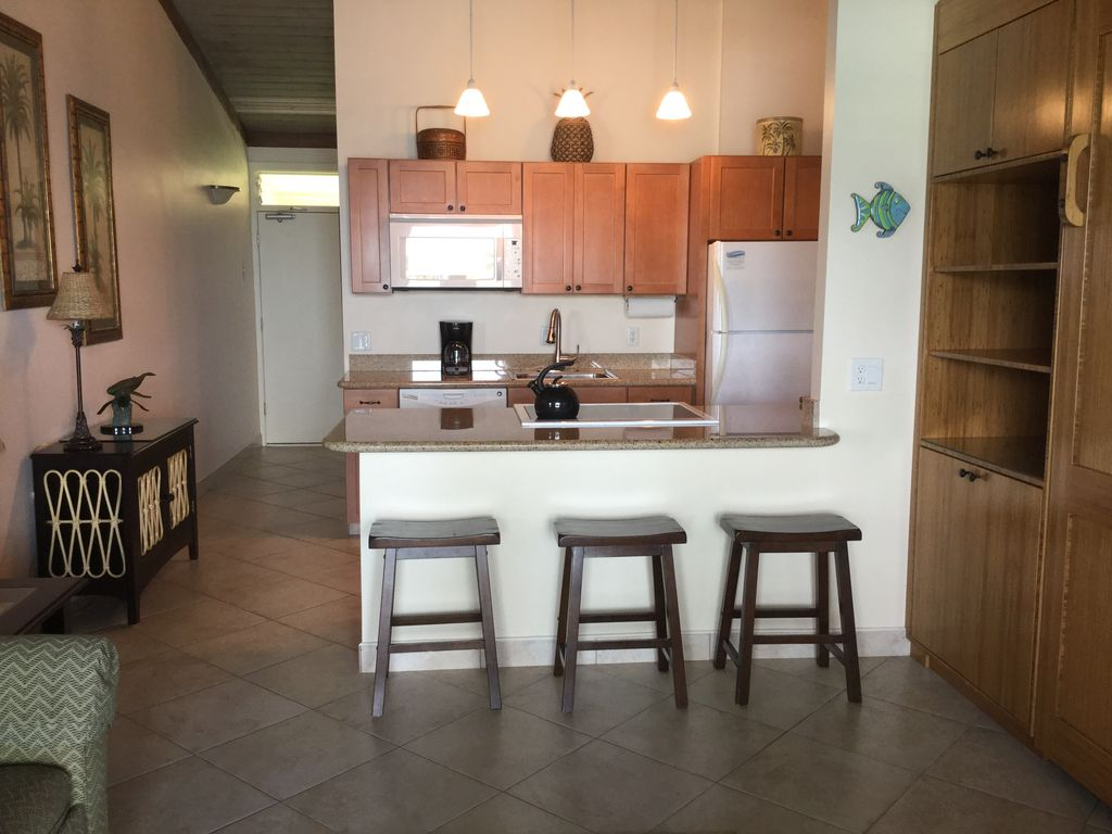 Newly remodeled kitchen with everything you need to cook or grill outside.