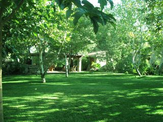 Ojai estate photo - Huge Lawn for Games & Events