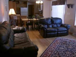 Wisconsin Dells cabin photo - Family Room/ Kitchen