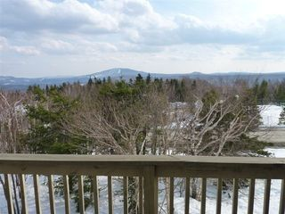 View - Bromley Mountain condo vacation rental photo