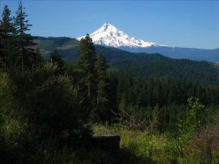 Hood River house photo - Mt. Adams View from Fir Mountain Road