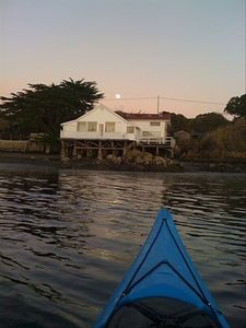 Point Reyes National Seashore is a 15 minute paddle.