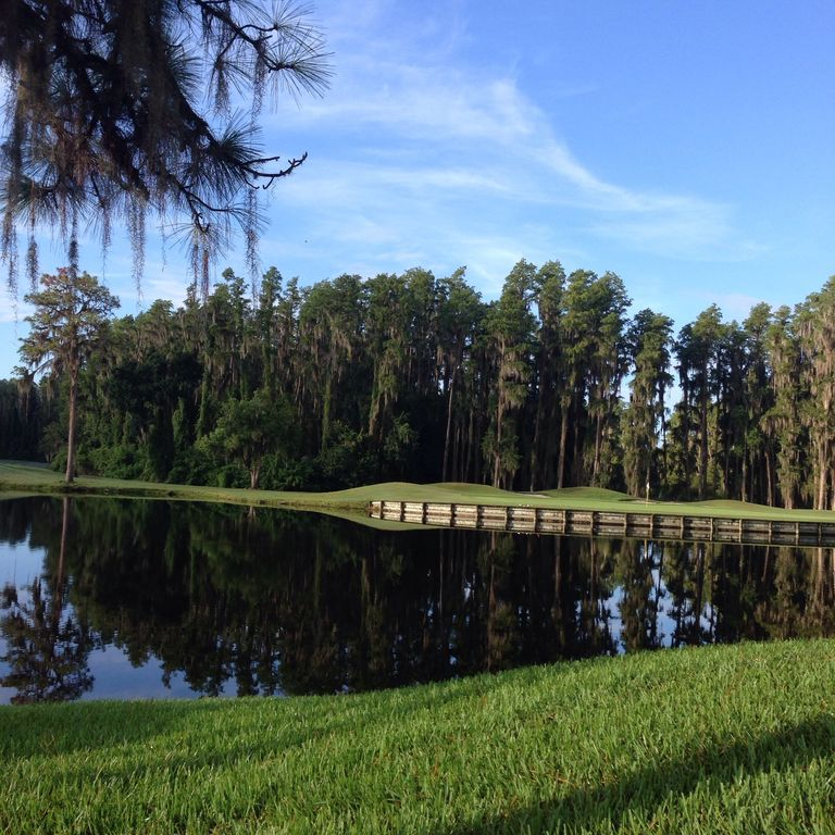 One Room Tampa  Saddlebrook  Resort  Condo - Best Tennis And Golf In Florida