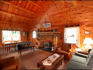 Lehighton cabin photo - Cozy and Comfortable Great Room