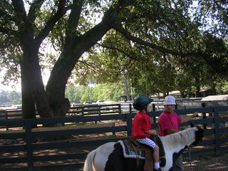 Palmetto Dunes villa photo - Horseback Riding