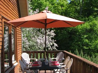 Back deck with views - Bartlett house vacation rental photo