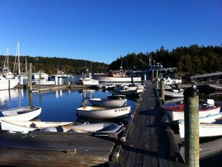 northeast harbor marina, boats to outer islands, farmers market