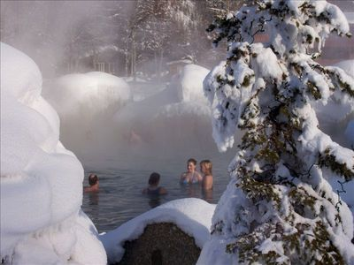 Winter Chena Hot Springs Outdoor Rock Lake by Denise Ferree
