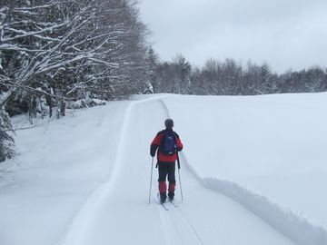 Cross Country Ski/Hiking Trail In Winter