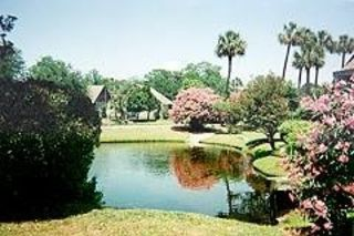 Palmetto Dunes villa photo - Lagoon in Spring
