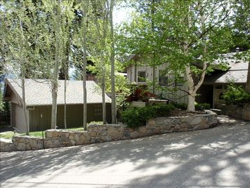 Great corner location. Giant pines & delicate aspens on terraced lot.