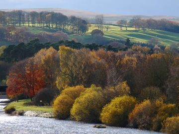 River Tyne with autumn colours