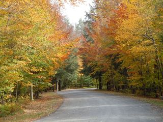 Poconos Pines - Pinecrest Lake townhome photo - Autumn walking trails in Pinecrest