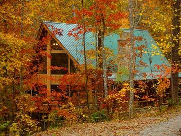 Oneida cabin rental - Welcome to Crikett Lane!